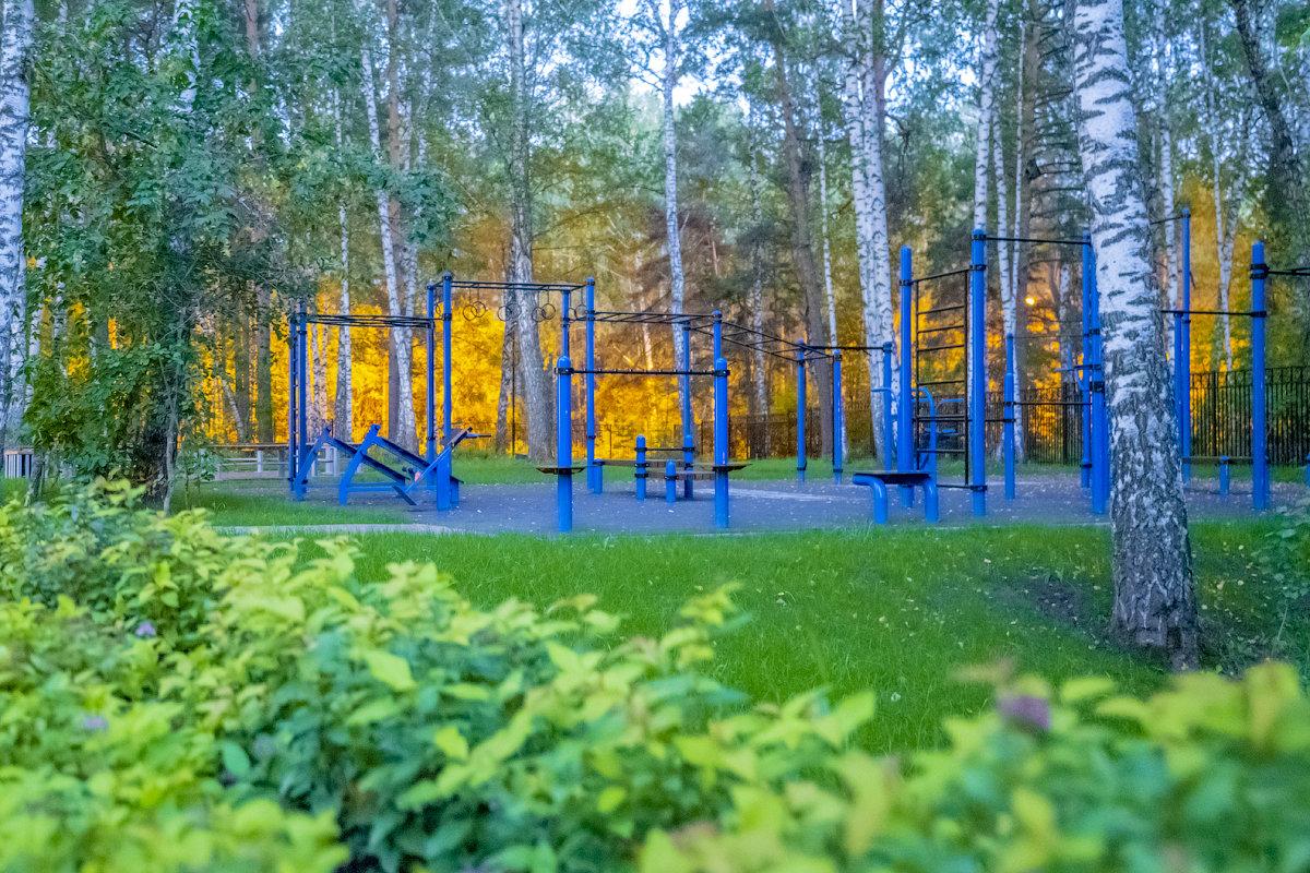 Школьная спортивная плошадка в лицее №130 Академгородка