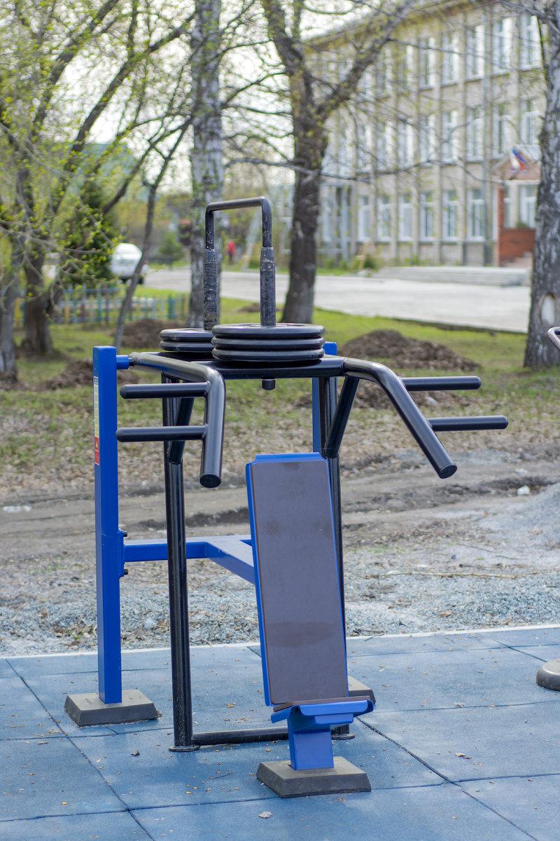 """Площадка по программе """"Спорт - норма жизни"""" . Барышево. Новосибирская область."""