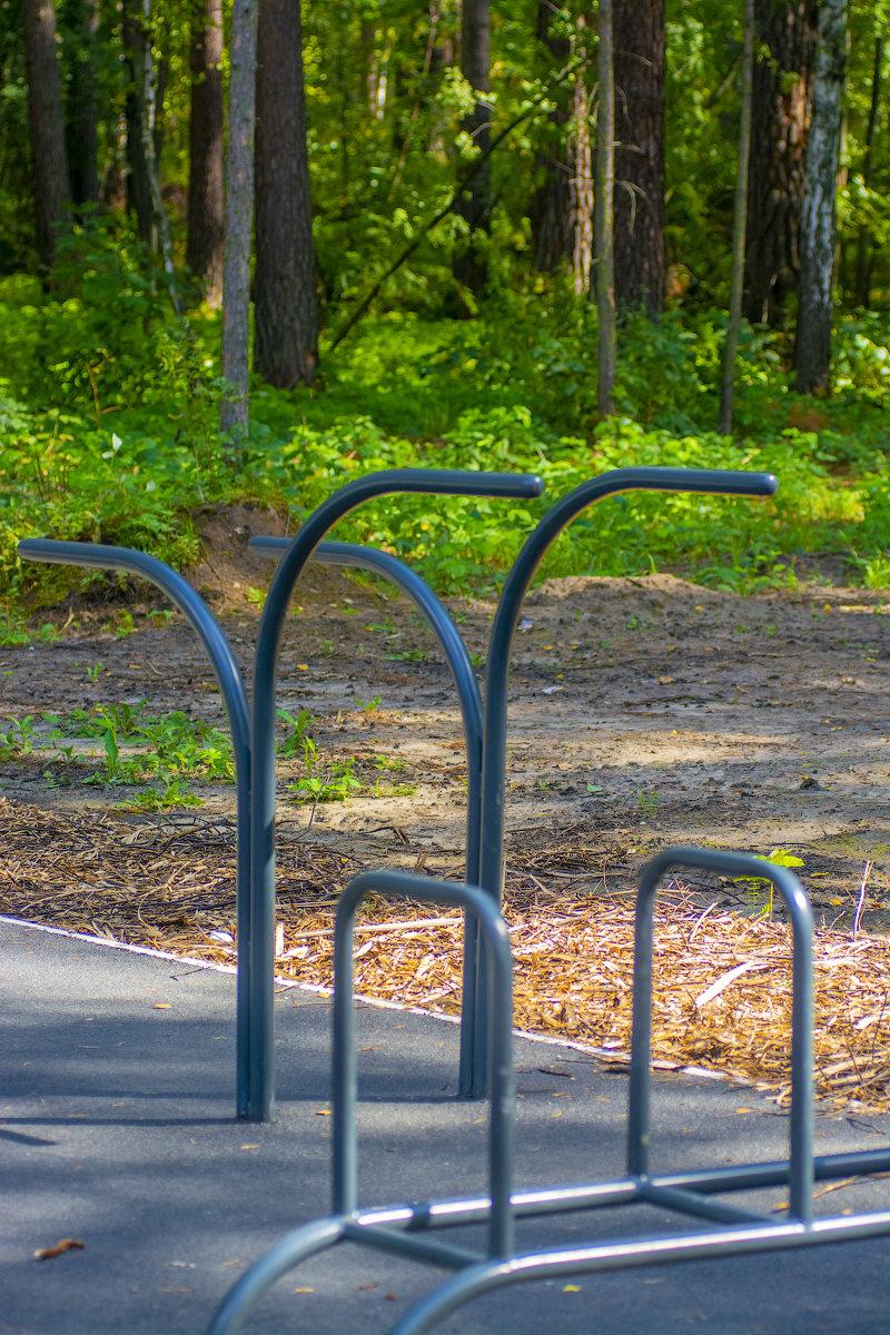 Уличная спортивная площадка в Заельцовском парке Новосибирска